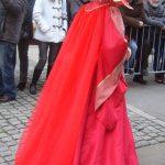 Carnaval vénitien de Longwy : profil